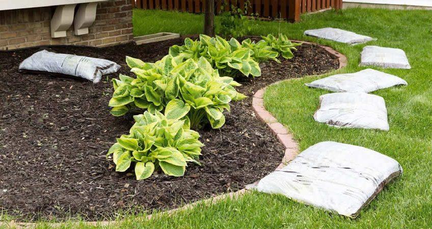 Hazır çim döşenecek toprak nasıl hazırlanmalı ?