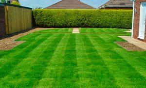 Karşıyaka rulo çim